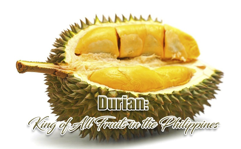 Durian: King of All Fruits in the Philippines