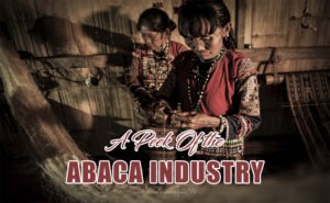 A Peek Of the Abaca Industry